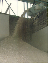 The raw clay arrives from the quarry and is loaded into a crusher and then conveyed to the storage bins.