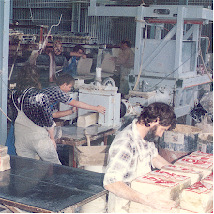 The cakes are stored for ageing and then fed through a de-airing pugmill which removes any air and homogenizes the clay. The extruded clay is cut into 10 kg and 12.5 kg blocks and bagged into long life polythene bags.